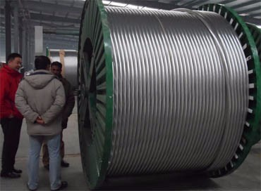 Aluminum Conductor XLPE Insulation Overhead 10KV Cable