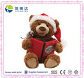 Christmas Storytime Teddy Bear Animated Stuffed & Plush Toy
