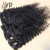 Raw Unprocessed Virgin Hair Vendors Mink Brazilian Kinky Curly Clip In Hair Extensions