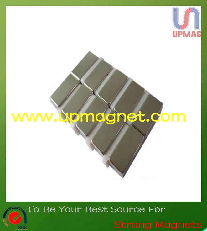 Rare earth magnets for motor