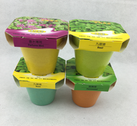 Bamboo fiber garden mini flower pot with seeds
