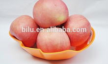 Best price of chinese fresh apple fruit export to for ICU&CCU use
