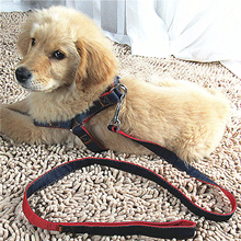 2016 New Products Retractable Cool Dog Cat Harness Pet Harness And Leash