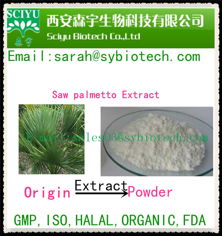 Supply high quality saw palmetto