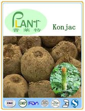 Top quality esponja konjac