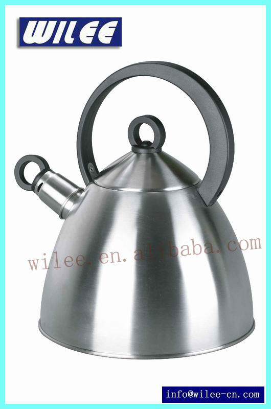 Stainless Steel Cordless Tea Kettle Brushed