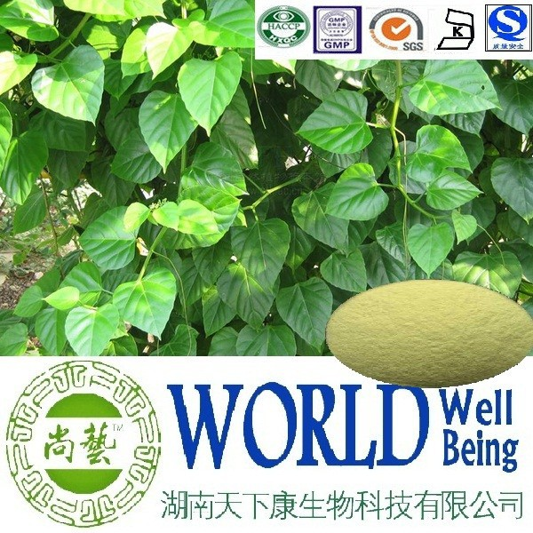 Hot sale Cissus Quadrangularis extract/Glycosides 10%/Cissus extract/Lower lipid level plant extract