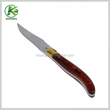 High-end stainless steel fancy steak knife/bulk knife with color wood handle