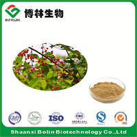 Chokeberry Extract Powder with Rich Vitamin C for Cosmetics