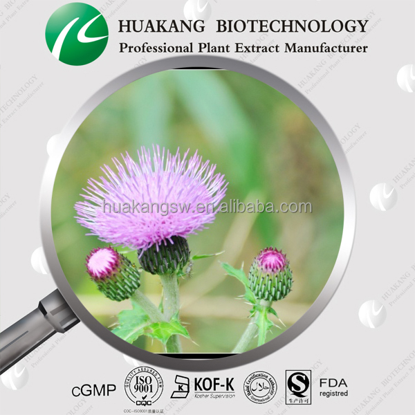 Liver protection 80% Silymarin Milk Thistle extract