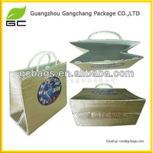 Environmental thermostat bag cooler bag for refreshing food