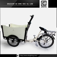 electric cargo bike strong frame BRI-C01 lithium iron battery