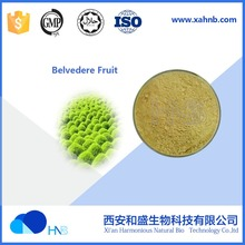 2017 Hot Selling with samples for Belvedere Fruit P.E. / Fructus Kochiae Extract