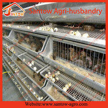 High quality wire mesh quail cage design metal quail cage commercial quail cages