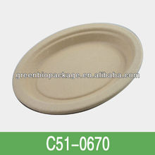 disposable bamboo food Plate