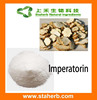 Manufacturer Supplier Angelica Root Extract 10% 98% Imperatorin