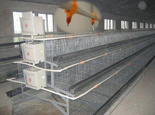 3 tiers 5 doors uganda poultry farm automatic chicken layer cage