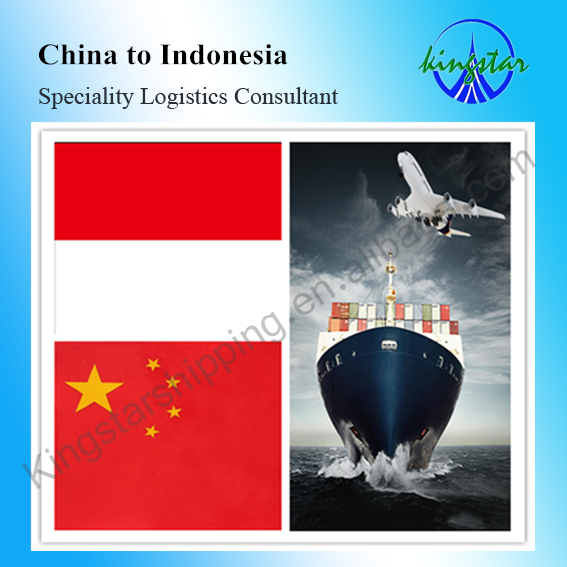 sea shipping to Jakarta Indonesia from china /shenzhen/tianjin/shanghai etc for FCL/LCL--Jason