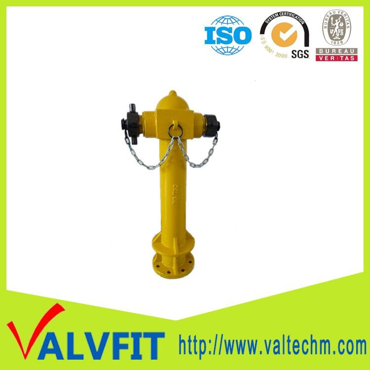 BS750 Ductile cast iron 2 way fire hydrant