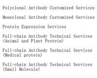 WB insured Monoclonal Antibody Customized Services