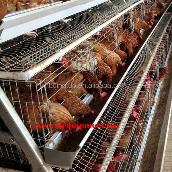 Trade Assurance layer chicken cage 96 birds poultry cage 120birds 160 birds battery cages for sale