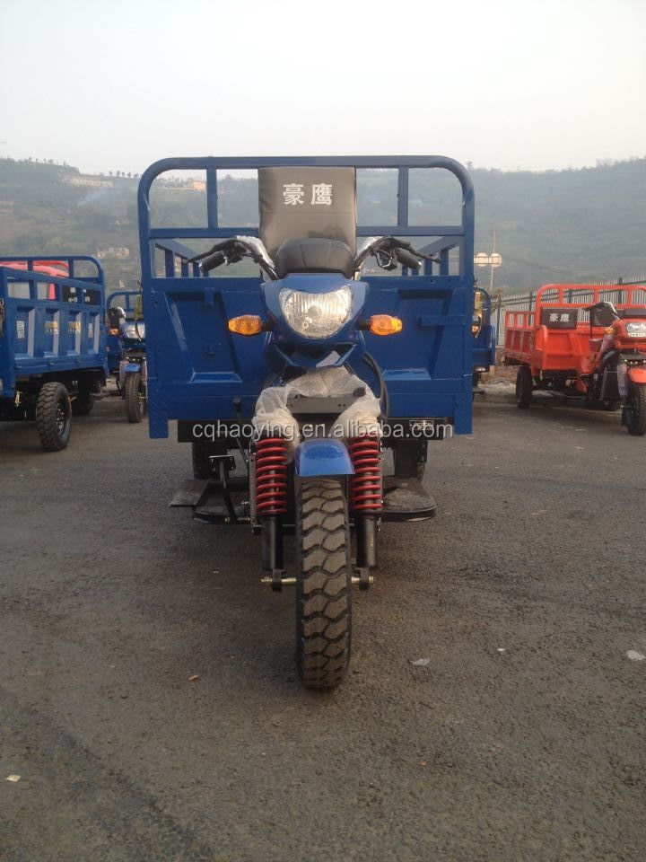Electric/Gasoline Popular Heavy Load Powerful Three Wheel Motorcycle