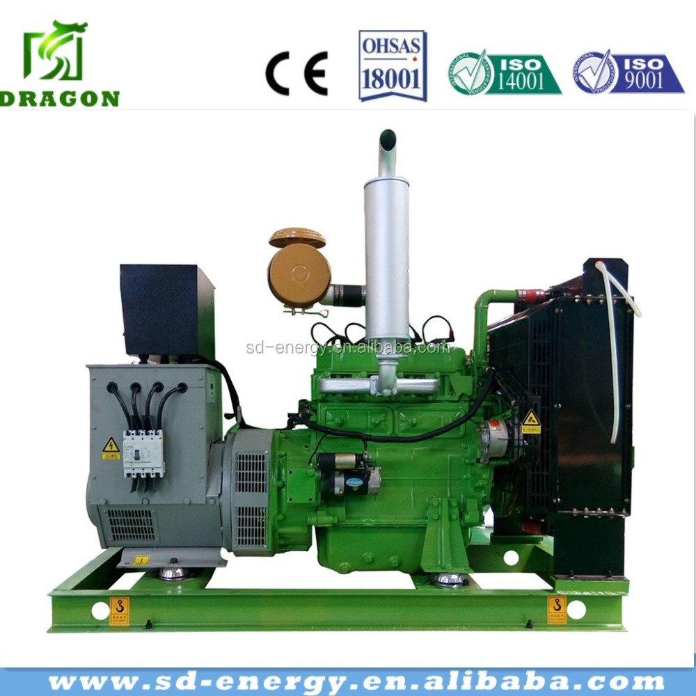 Biogas gas as fuel generator set with CHP 100kw low rpm permanent magnet alternator