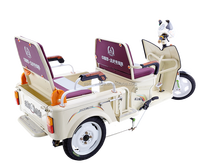 Family use High performance price ratio folding motor tricycle in North America