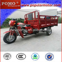 Gasoline Motorized 2013 Best Selling New Cheap Popular Cargo Three Wheel Cycle