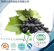 hot selling low price 100% pure natural Proanthocyanidins 95% organic grape seed extract grape seed extract softgel capsule