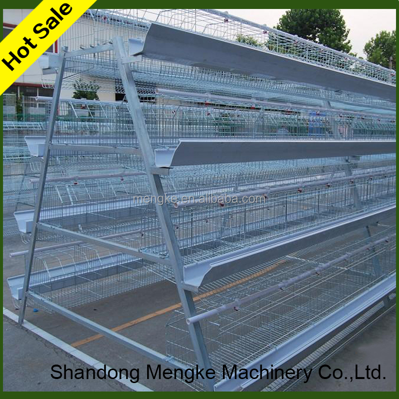 China automatic cage bird pigeon for pigeon manufacturers