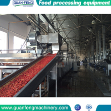 chinese Wholesale Custom fruit and vegetables drying machine