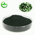 Hot sale high protein spirulina powder/organic spirulina powder/reb spirulina powder