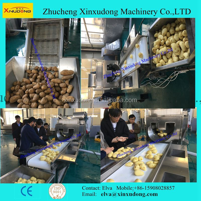 China Automatic Professional Fresh Potato French Fries Making Machine