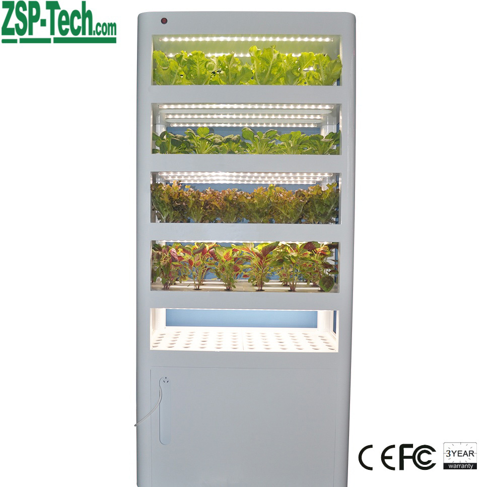 North European market indoor Hydroponic system plants