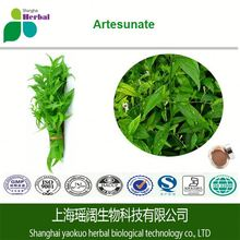 ISO certification 100% original common andrographis herb extract