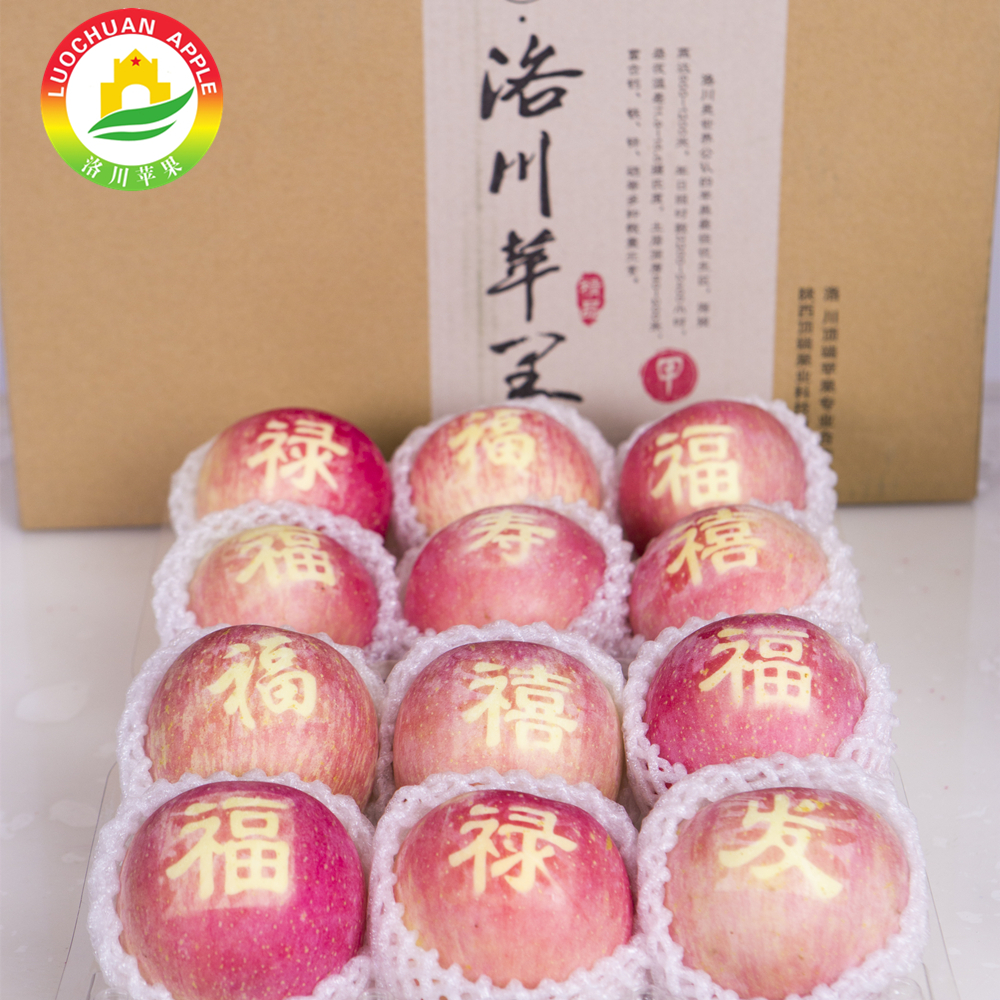 The crunchy Fuji Apple Luochuan apples fresh sekaiichi apple