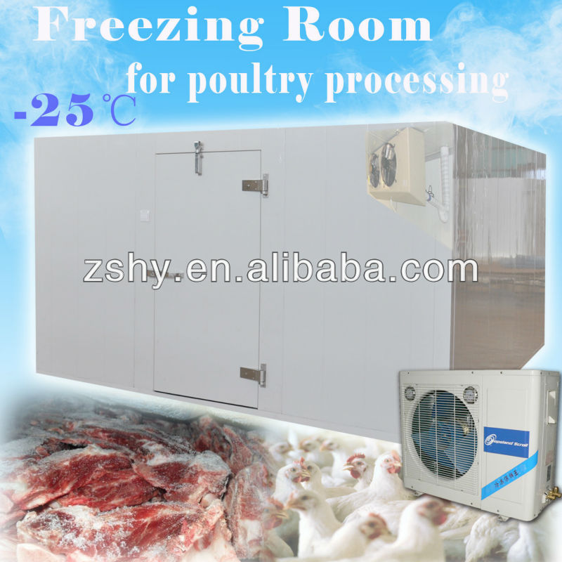 Freezer Room to store frozen chicken