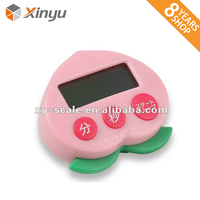 Programmable Digital Timer Electronic Digital Count