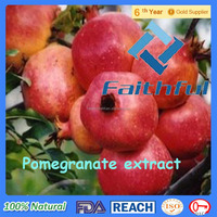 Pomegranate Rind Extract/Natural Herb Pomegranate Flower Extract