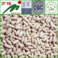 fresh white beans competitive price