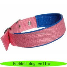 Europe dog collar, cheap dog product, padded dog collar
