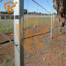 quality product of 0.9m 1.2m galvanized cattle fence