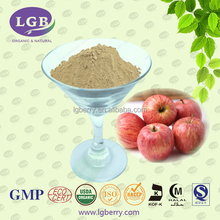 Apple Fiber Apple Extract Natural Slimming Capsule Dietary Supplement of Plant Dietary Powder