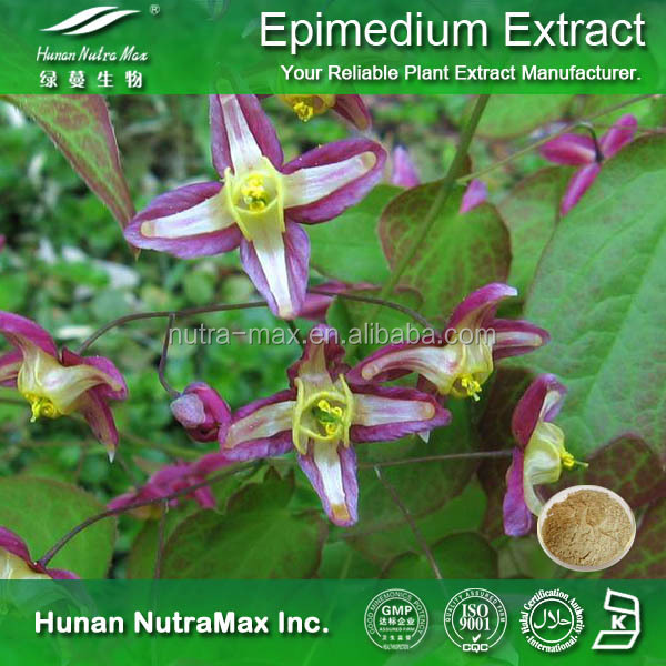 Sex Product Epimedium Extract High quality China Supplier Icariin 50% 60% 80% 98%