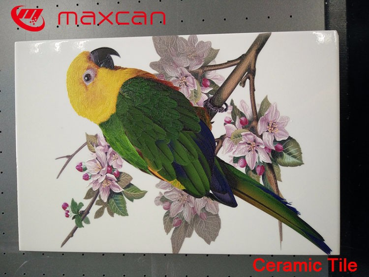 Maxcan photo flat bed printer with good service