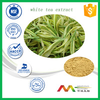 NSF-cGMP Manufacturer Healthy Product Wholesale Chinese White Tea Extract