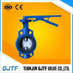 Mini Single Plate Linning Ss Butterfly Valve Manufacturers