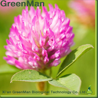 Professional Manufacturer Isoflavones 8% Red Clover extract/ Red Clover extract Isoflavones powder/ Isoflavones powder 8%