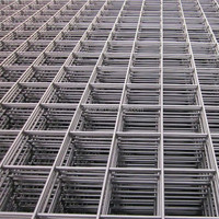 China Professional Manufacture Concrete Reinforced Steel Bar Welded Wire Mesh